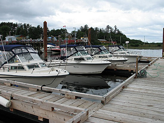 Our world-renowned competitor, Queen Charlotte Lodge, shares the same private marina with Chinook Lodge